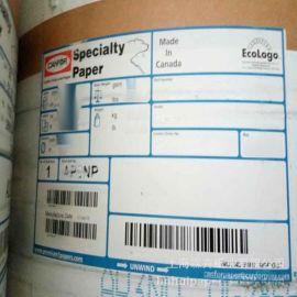 温州嘉兴加拿大北极熊牛皮纸 进口伸性白牛纸袋纸SPECIALTY paper