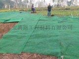 邊坡防護三維植被網規格/三維植被網報價
