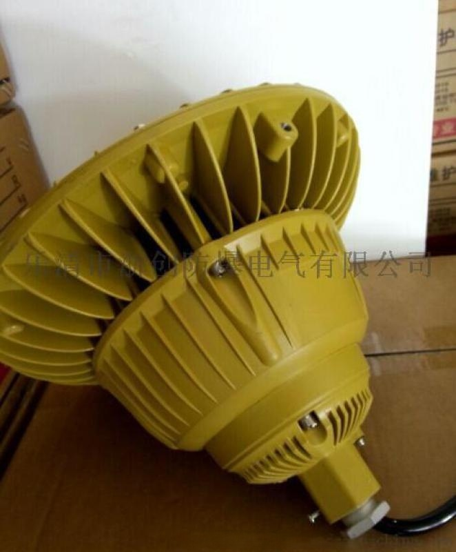 BLD75化工廠法蘭立杆式led防爆馬路燈120W
