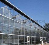 智能玻璃无土栽培温室