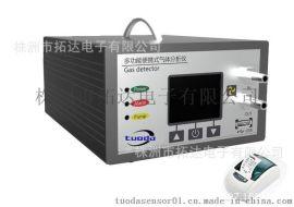 手提式一氧化碳分析仪TD600-CO