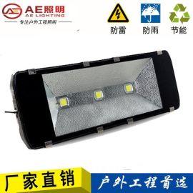 LED投光灯 工矿灯泛光灯路灯投射灯户外室外防水 双芯100W正白 led投光灯