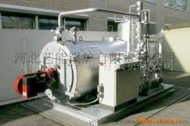 艺能WNS系列燃气锅炉蒸汽锅炉热水锅炉