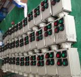 BZC53-A2D2 防爆操作柱按鈕開關