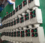 BZC53-A2D2 防爆操作柱按钮开关