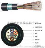 弱電工程、光纖入戶專用室外光纜GYTS/A