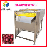 不锈钢毛刷喷淋清洗机 果蔬洗果机