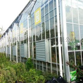 北方智能玻璃大棚建设厂家选青州锦坤温室