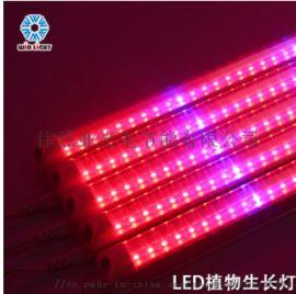 T8一体化LED植物生长灯