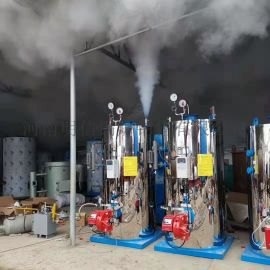 燃油气蒸汽发生器 节能自动低氮蒸发器