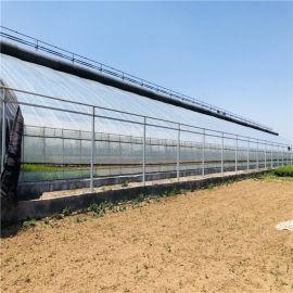 日光温室造价预算 蔬菜日光温室大棚建设施工