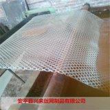 8mm塑料网 双向拉伸网 塑料鸭床网厂家