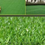 人造草坪A學校人造草坪A人造草坪廠家