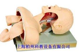 气管插管训练模型(BZ-J50)