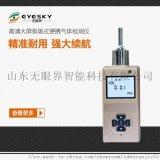 ES10B10-O2氧化鋯分析儀