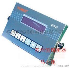 E0833本安型防爆仪表,E0833防爆电子秤