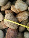 厂家直销河北石家庄3-5厘米天然灰色鹅卵石