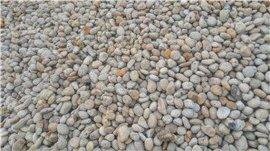 厂家批发天然小型鹅卵石 河床石