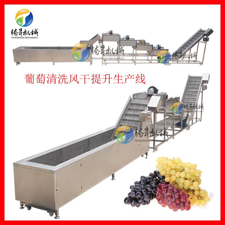 葡萄生产线