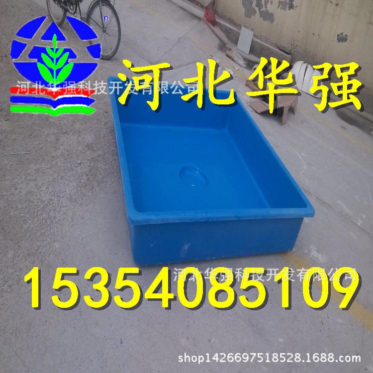 2135934466_1838001085.jpg_.web
