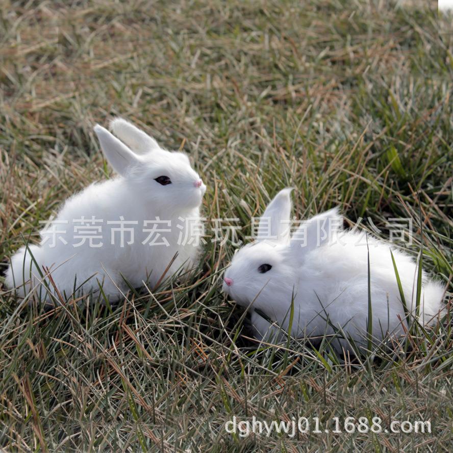 毛絨兔子公仔