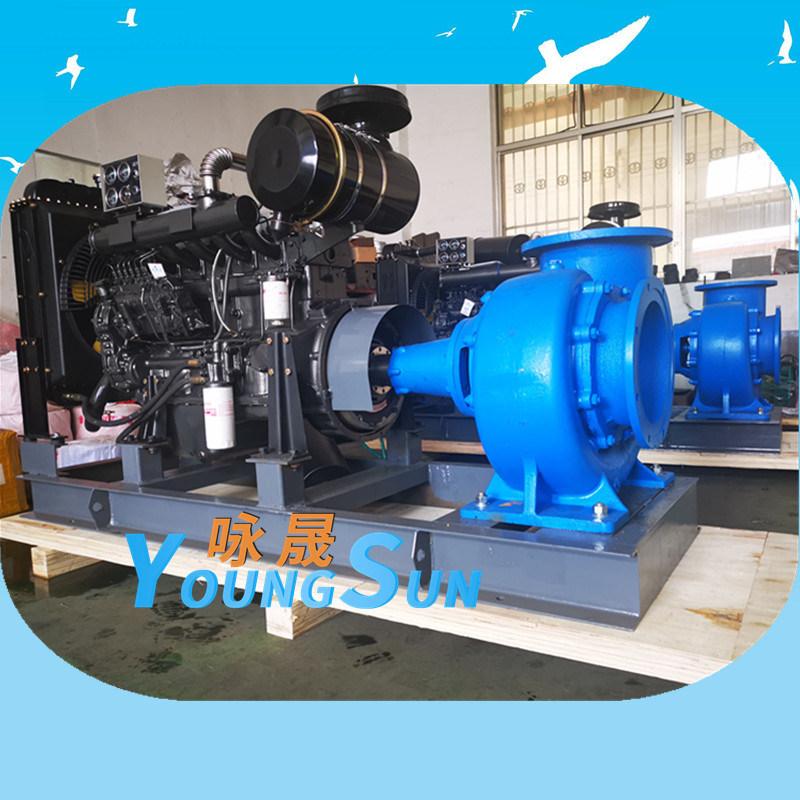 柴油机水泵300HW-10
