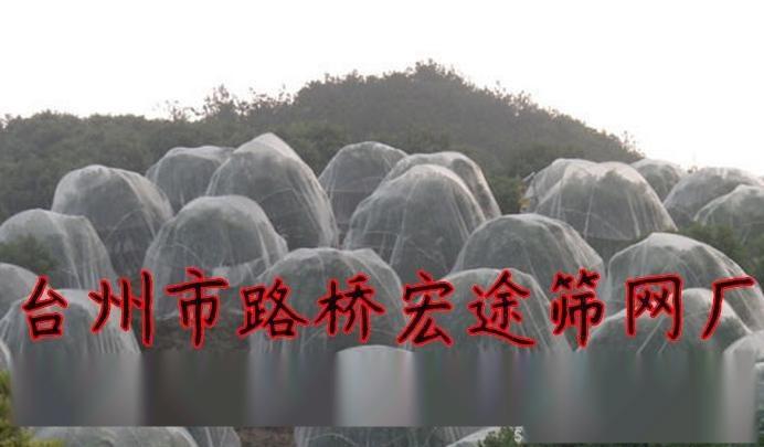 土豆防虫网,马铃薯防虫网,马铃薯脱毒防虫网,农用防虫网防虫网覆盖