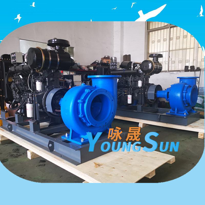 柴油机水泵300HW-12