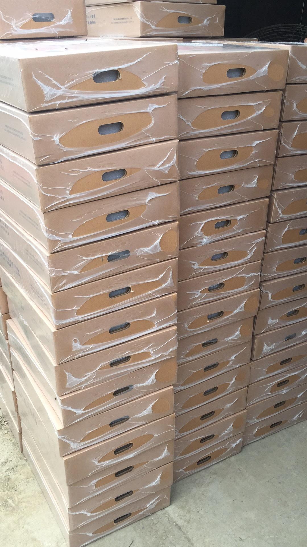 纸箱塑包装机2