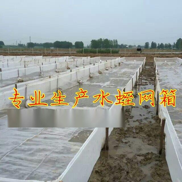 水蛭网箱厂家 水蛭养殖  水蛭网箱养殖