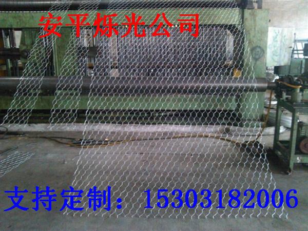 石籠網1 (38)
