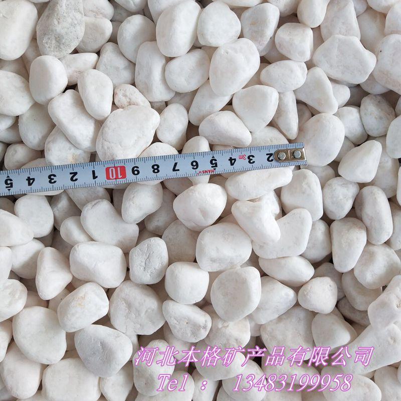 白石子厂家 白色鹅卵石 别墅园林铺路用白石子133870355