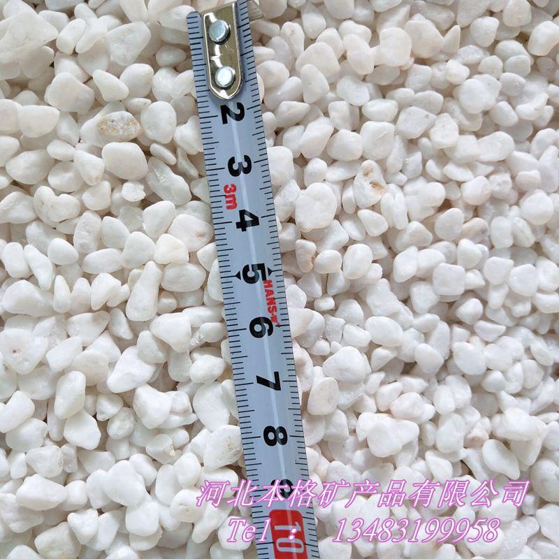 白石子厂家 白色鹅卵石 别墅园林铺路用白石子133870295