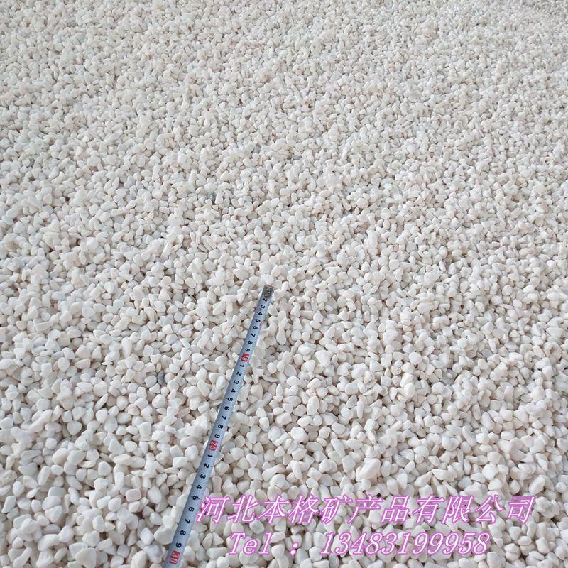 白石子厂家 白色鹅卵石 别墅园林铺路用白石子133870225