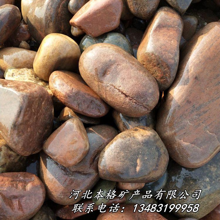 天然鹅卵石 河卵石 园林铺路鹅卵石 滤水垫层鹅卵石86809885