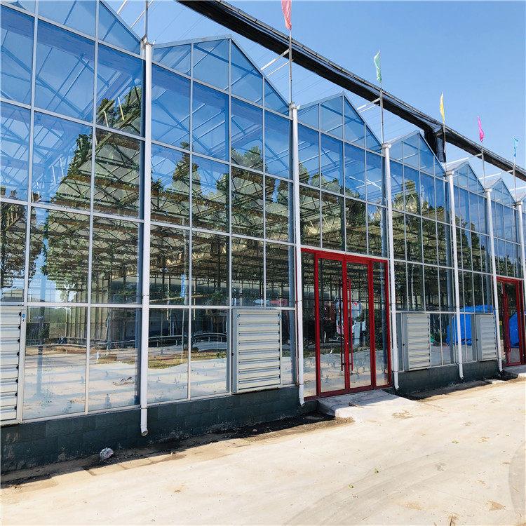 智能温室造价预算 连栋智能温室大棚建设施工846741132