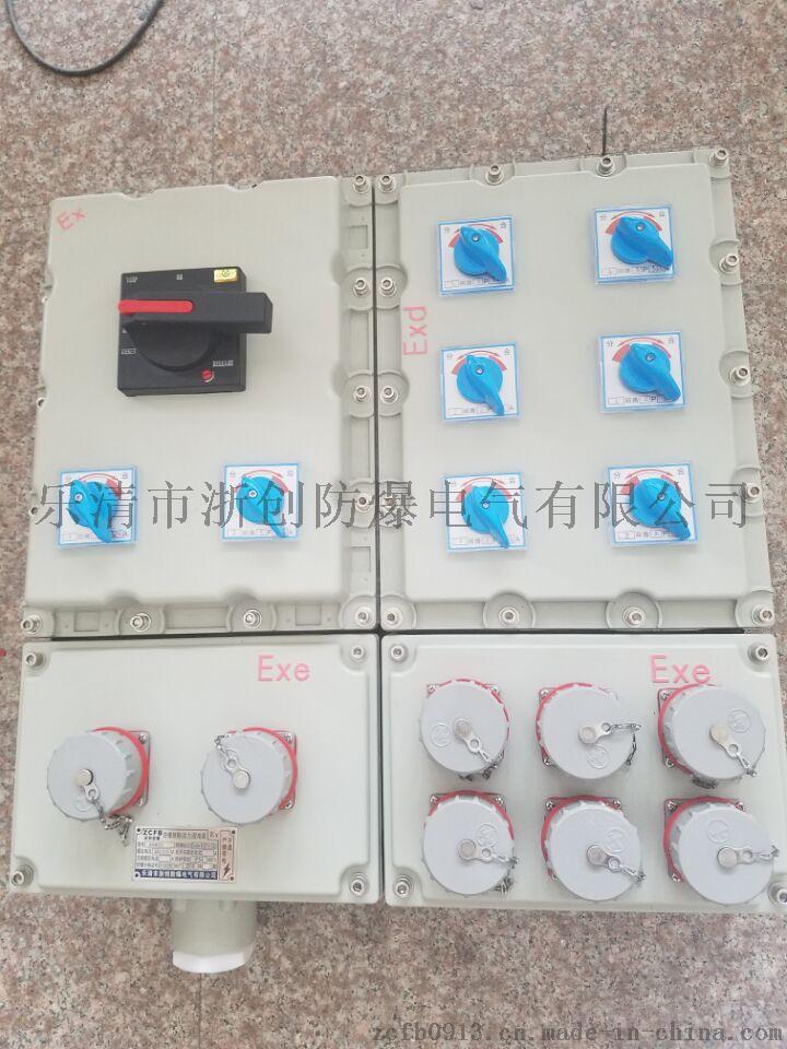 照明动力配电箱  BXMD防爆防腐照明动力配电箱726778922