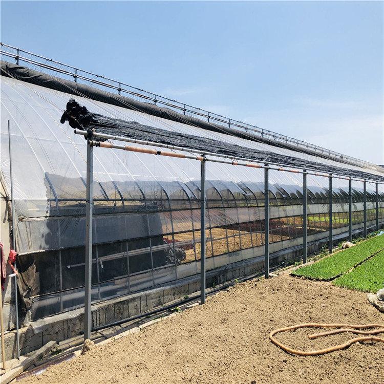 日光温室造价预算 蔬菜日光温室大棚建设施工846744012
