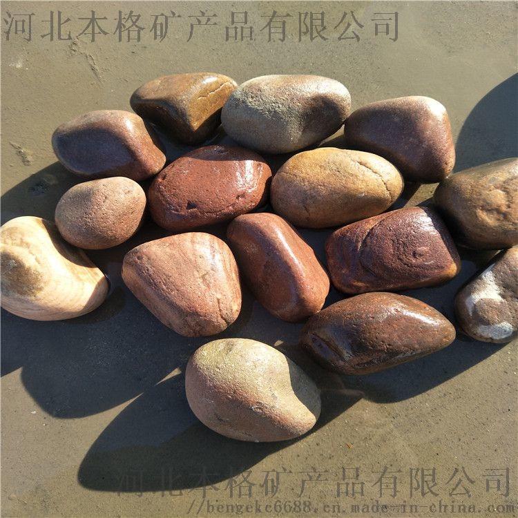廊坊鹅卵石厂家 本格鹅卵石多少钱一吨807554465