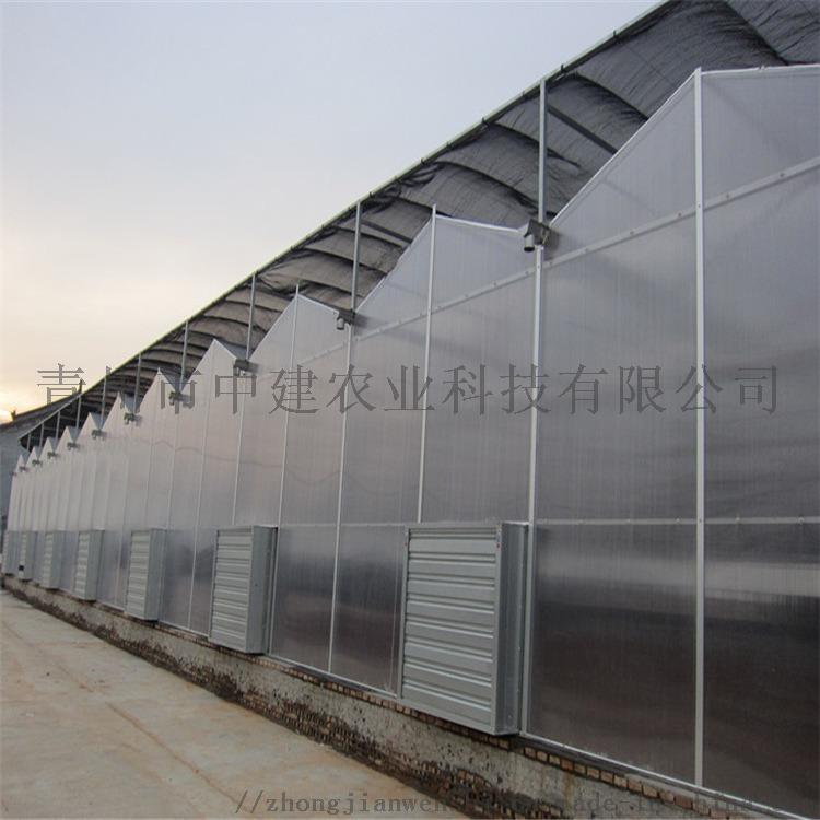 阳光板温室造价预算 PC连栋阳光板温室大棚建设施工846742102