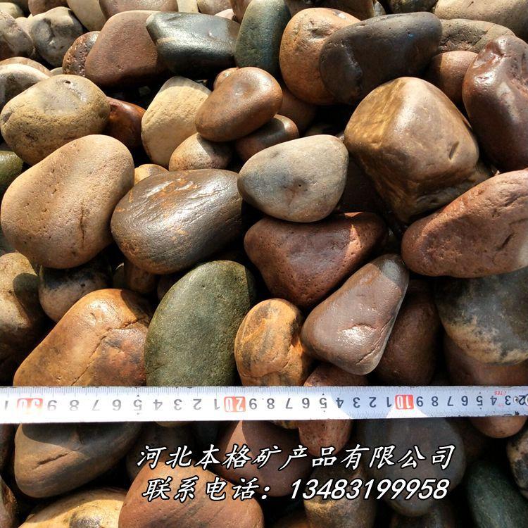 本格供应变压器鹅卵石园林造景鹅卵石 河卵石801741225