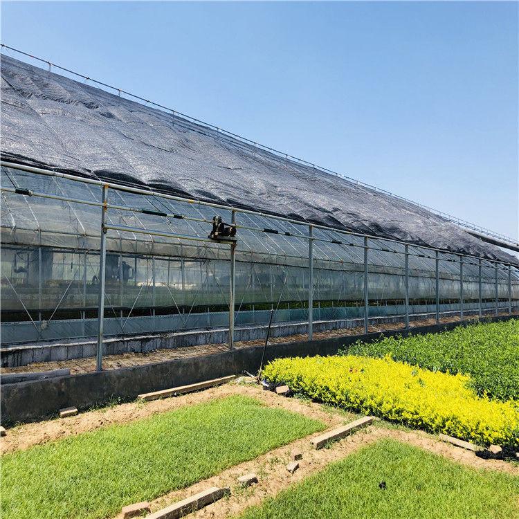 日光温室造价预算 蔬菜日光温室大棚建设施工846744042