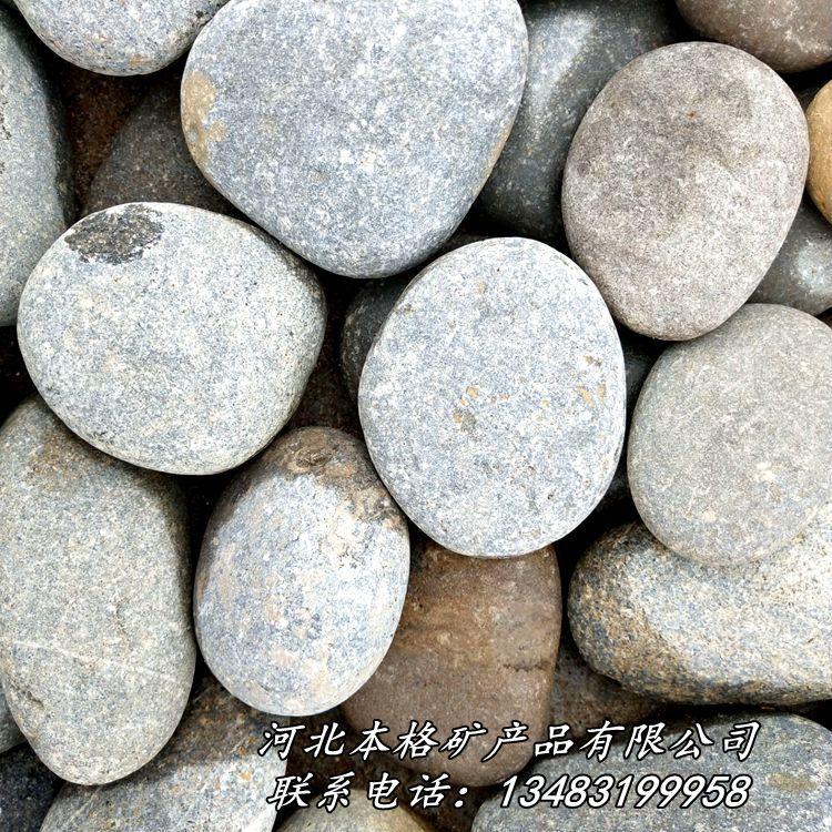 天然鹅卵石 河卵石 园林铺路鹅卵石 滤水垫层鹅卵石86809975