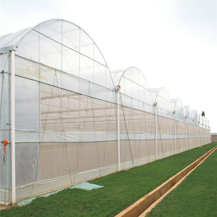 薄膜温室建设施工 连栋薄膜温室大棚造价预算846743002