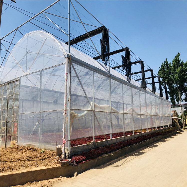 薄膜温室建设施工 连栋薄膜温室大棚造价预算846743022