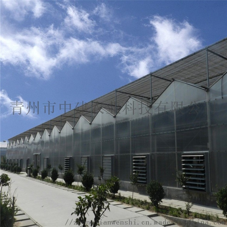 阳光板温室造价预算 PC连栋阳光板温室大棚建设施工846742112
