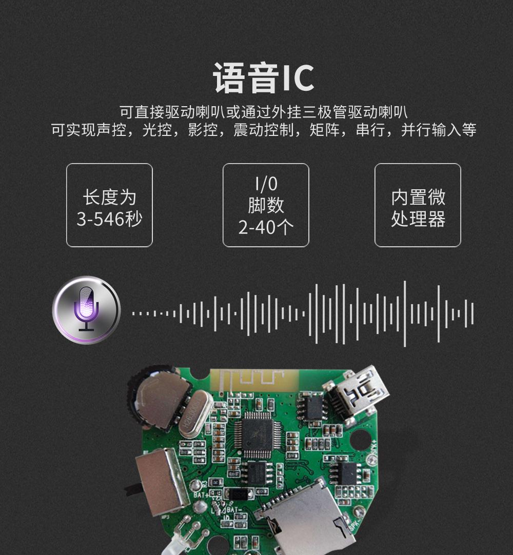 自然声IC自然界声音IC雷雨声IC语音IC100770682