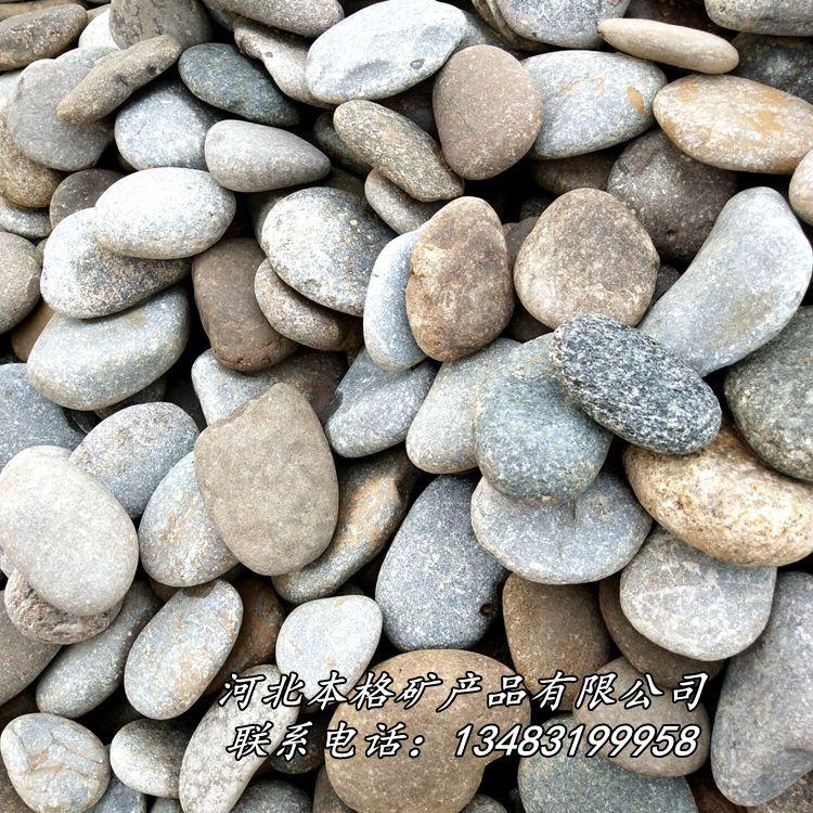 天然鹅卵石 河卵石 园林铺路鹅卵石 滤水垫层鹅卵石86809955