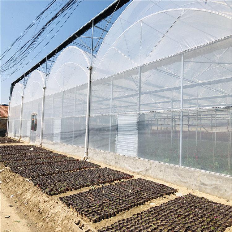 薄膜温室建设施工 连栋薄膜温室大棚造价预算846742982