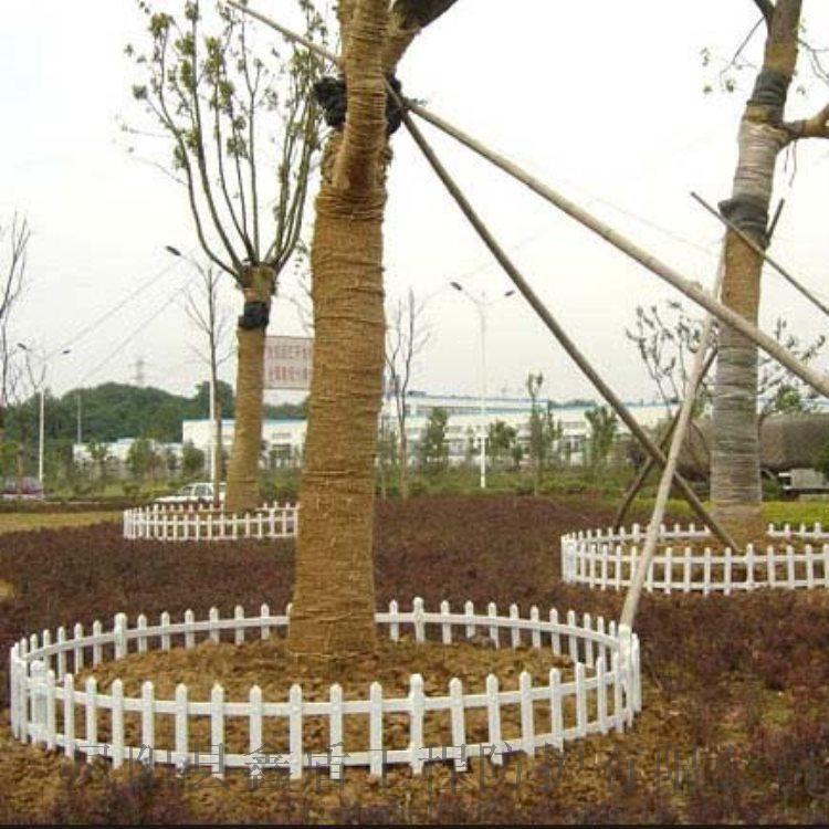 陕西咸阳pvc绿化护栏 木质草坪护栏照片